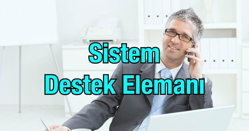 Sistem Destek Elemanı