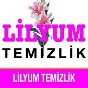 Lilyum Temizlik Ofis Temizliği Büro Temizliği