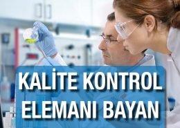Kalite Kontrol Elemanı Bayan Metsis Elektrik