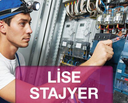 Lise Stajyer