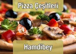 Pizza Çeşitleri Hamdibey Restaurant