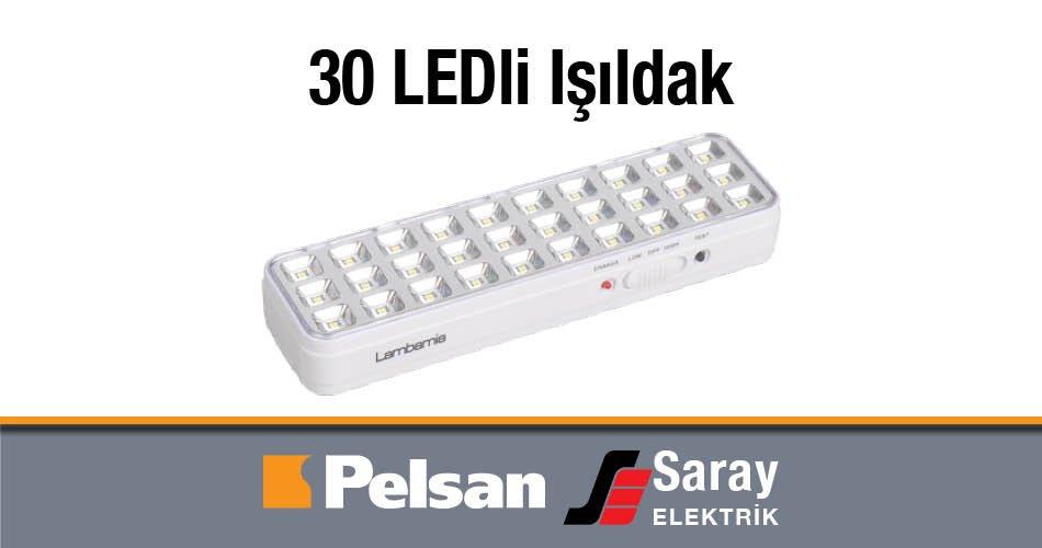 Pelsan Lambamia 30 LEDli Işıldak