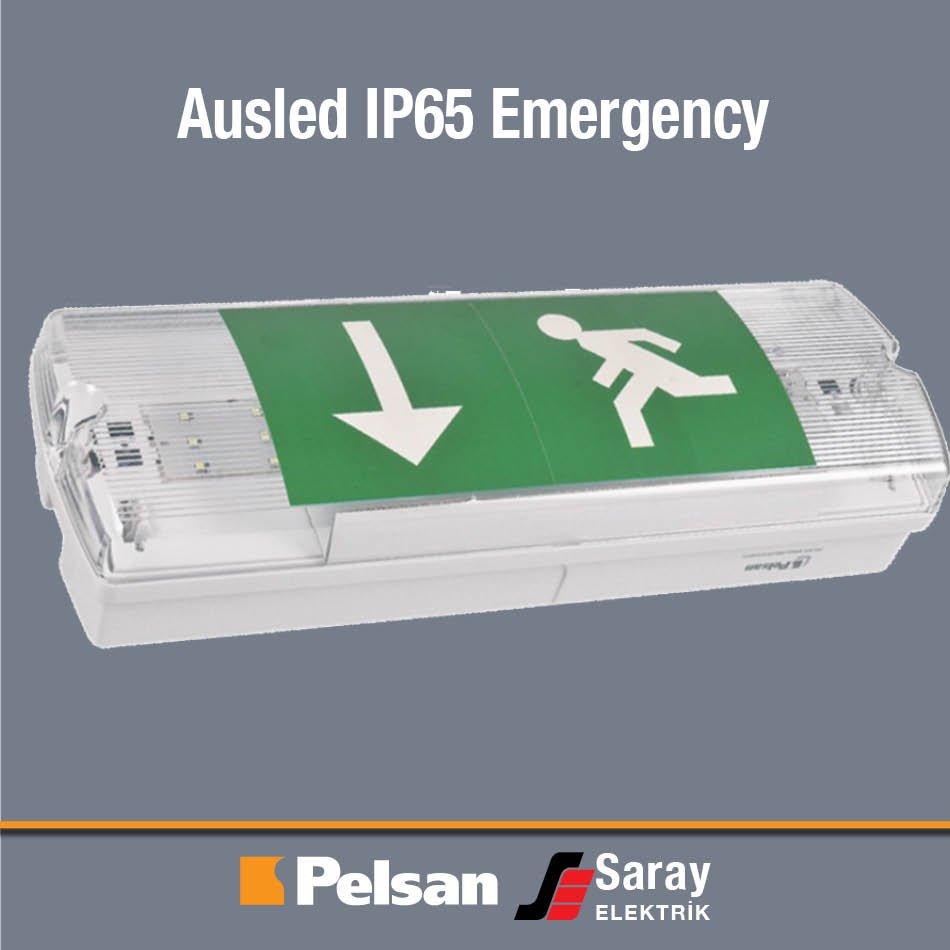 Pelsan Ausled IP65 Emergency