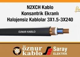 N2XCH Kablolar Konsantrik Ekranlı Bakır İletkenli