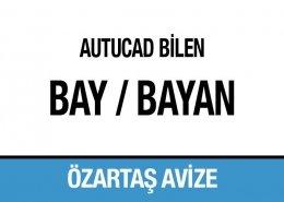 AutoCAd Bilen Bay Bayan